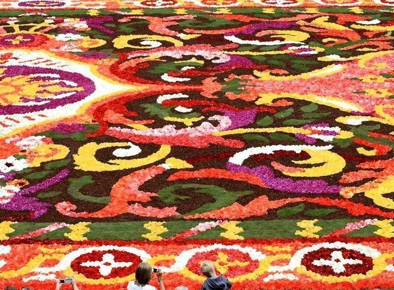 Un parterre de fleurs magnifique a bruxelles for Parterre de roses photos